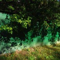 Свет и тень :: Андрей Лукьянов