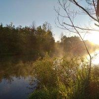 раннее утро на реке :: Алексей Клименко