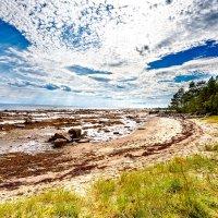 Отлив на Белом море :: Роман Дудкин