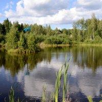 Заброшенное озеро :: Mc!! .....