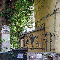 Старая ограда :: Сергей Лындин