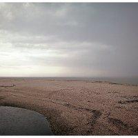 Дождь, утро на Ясенской косе :: Сергей Анатольевич