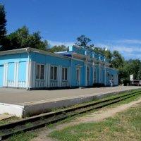 Вокзал Детской железной дороги :: Нина Бутко