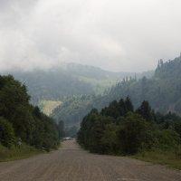 дорога к плато Лаго-Наки :: Григорий