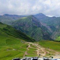 Альпийские луга Грузии на высоте 2 150 метров :: Вячеслав Случившийся