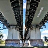 Под Братеевским мостом :: Анатолий Колосов