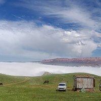 Жизнь над облаками :: Виктор Заморков