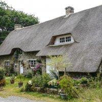 дом в национальном парке Бриерь (Briere) :: Георгий
