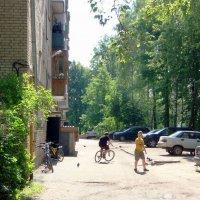 Солнечные каникулы в провинции... :: Елена
