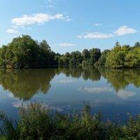 Старый пруд :: Александр Запылёнов
