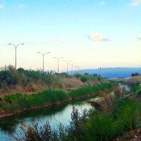 вечерняя прогулка к речке Нааман :: Александр Корчемный