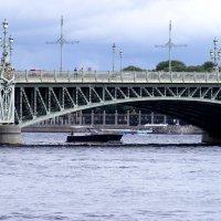 Троицкий мост. :: Татьяна