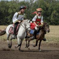 скачки на пони :: Елена Логачева