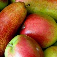 Яблочный Спас. Преображение Господне Бога и Спаса Иисуса Христа :: Надежд@ Шавенкова
