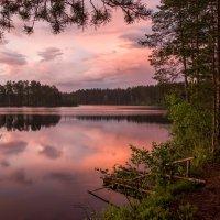 Озеро Сариярви. Карелия. :: Наталия Владимирова
