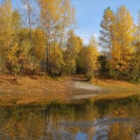 осень :: nataly-teplyakov