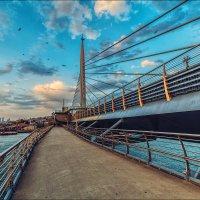 Метромост через залив Золотой рог :: Ирина Лепнёва