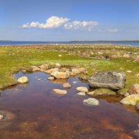Побережье Белого моря :: Константин