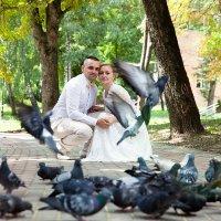 Любовь и голуби :: Виктория