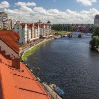 Река Преголя (Калининград) :: Roman В