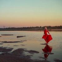 Песчаный берег :: Женя Рыжов