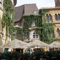 Городские кафе . Вена :: Алёна Савина