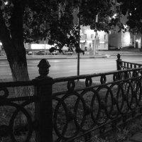 Чугунная ограда :: Валерий Михмель