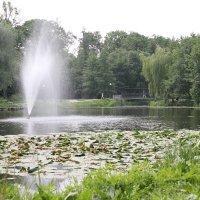 Тихое озеро :: Евгения Коркунова