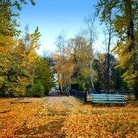 Осень в старом  в парке. :: Анатолий