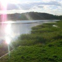 Залив Ляппяярви Ладожского озера :: Виктор Мухин