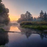 Там,где ночуют водомерки ... :: Roman Lunin