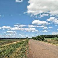 Если вы не материтесь за рулем, значит вы совсем не следите за дорогой :) :: Андрей Заломленков