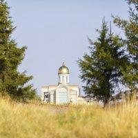 Наш прекрасный Север! :: Лариса Сафонова