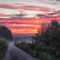 утро.дорога.туман... :: юрий иванов
