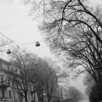 Одесса. Дерибасовская. Утренняя и туманная :: Николай Потанин