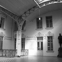 Витебский вокзал. :: Таэлюр