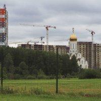 На юге лесопарка град растёт и храм сверкает куполами :: Юрий Велицкий