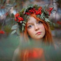 Юная осень...) :: Дина Агеева