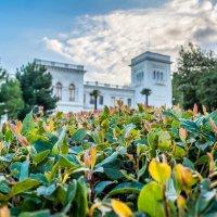 Ливадия. Ливадийский дворец. :: Tata Gorbunova