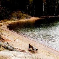Seurasaari coast 1 :: Wirkki Millson