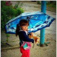 С зонтиком и дождь нипочём. :: Николай Тишкин