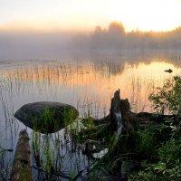 Утро туманное :: Валерий Толмачев