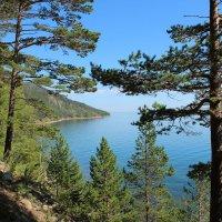 Берег Байкала :: Roman PETROV