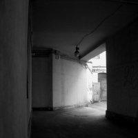 Во дворах :: AleksSPb