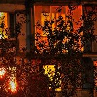 Московских окон негасимый свет  К дню города :: олег свирский