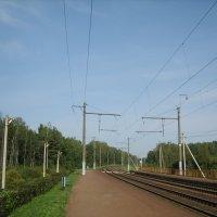 Дорога на запад :: Алёна Сапунова