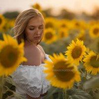 Закат лета :: Yana Sergeenkova