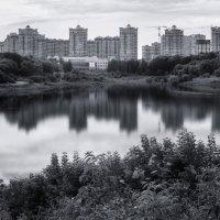 Вид на новостройки (Раменское, июль, 2018) :: Валерий Вождаев