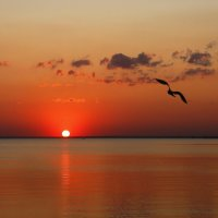 Уходило солнце на покой :: Нилла Шарафан