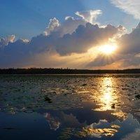 Закат на реке :: Анна Васильева (Anna-82V)